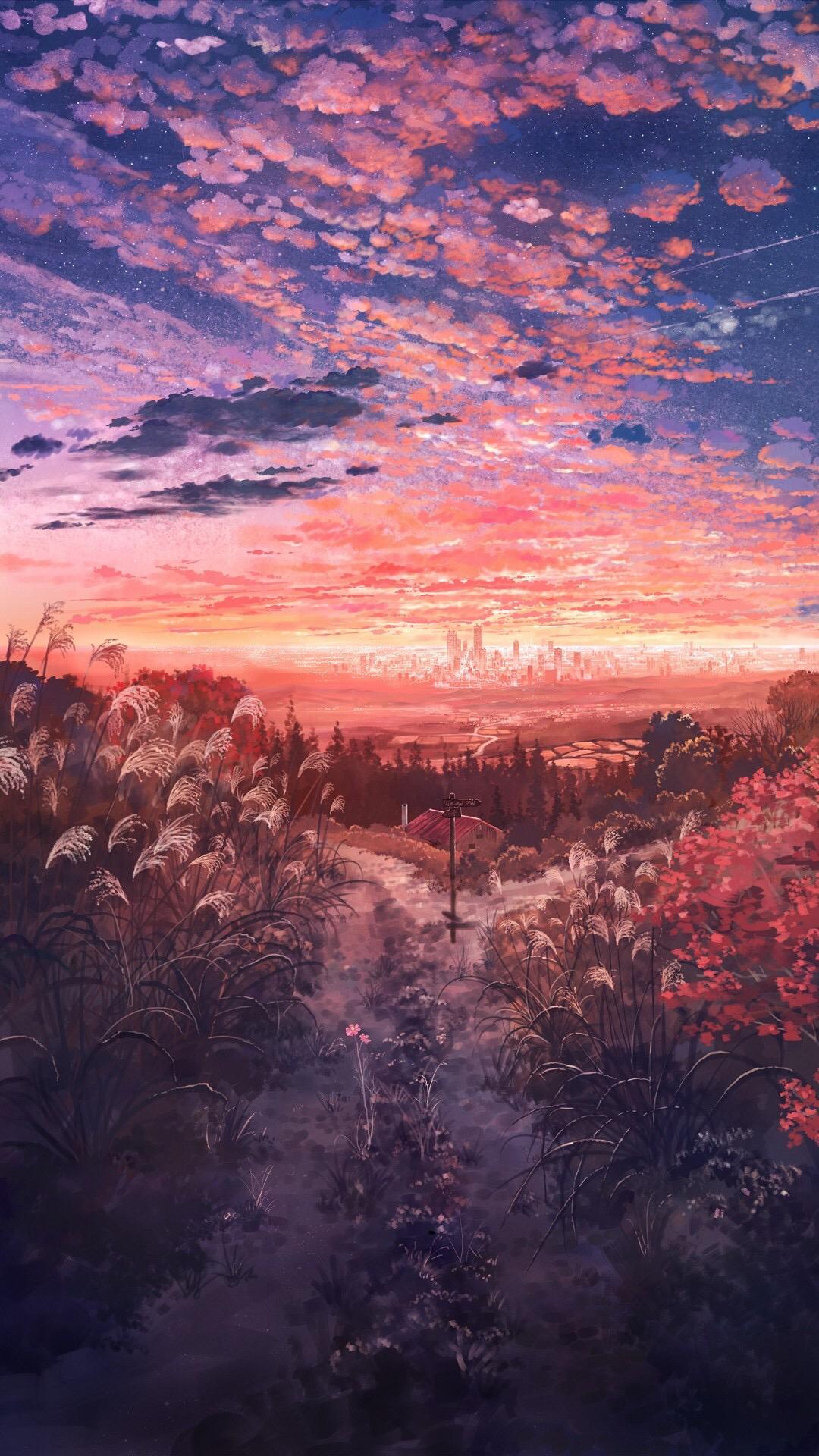 电脑上wap网:动漫场景 天空 夕阳 原野 芦苇 苹果手机高清壁纸 1080x