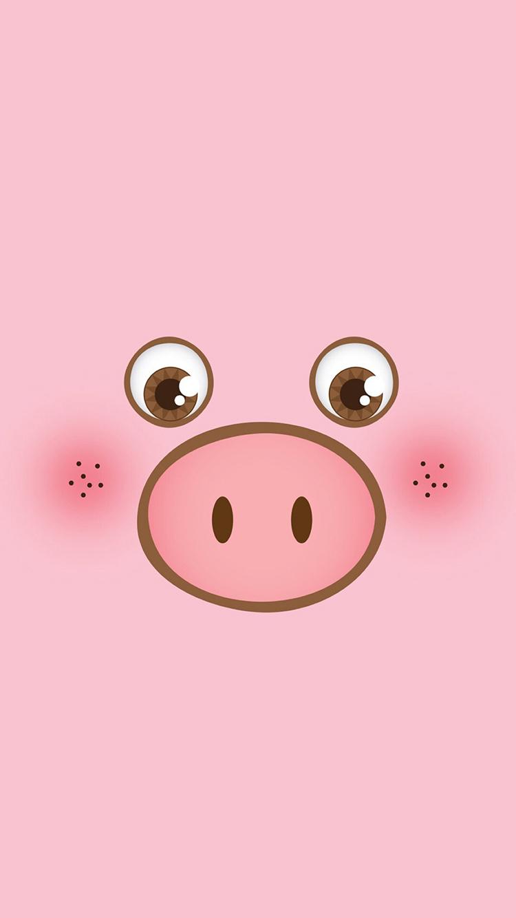 粉色背景 卡通可爱小猪 苹果手机高清壁纸 750x1334图片