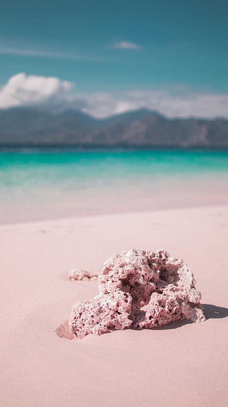 沙滩 大海 海滩 珊瑚 苹果手机高清壁纸 750x1334