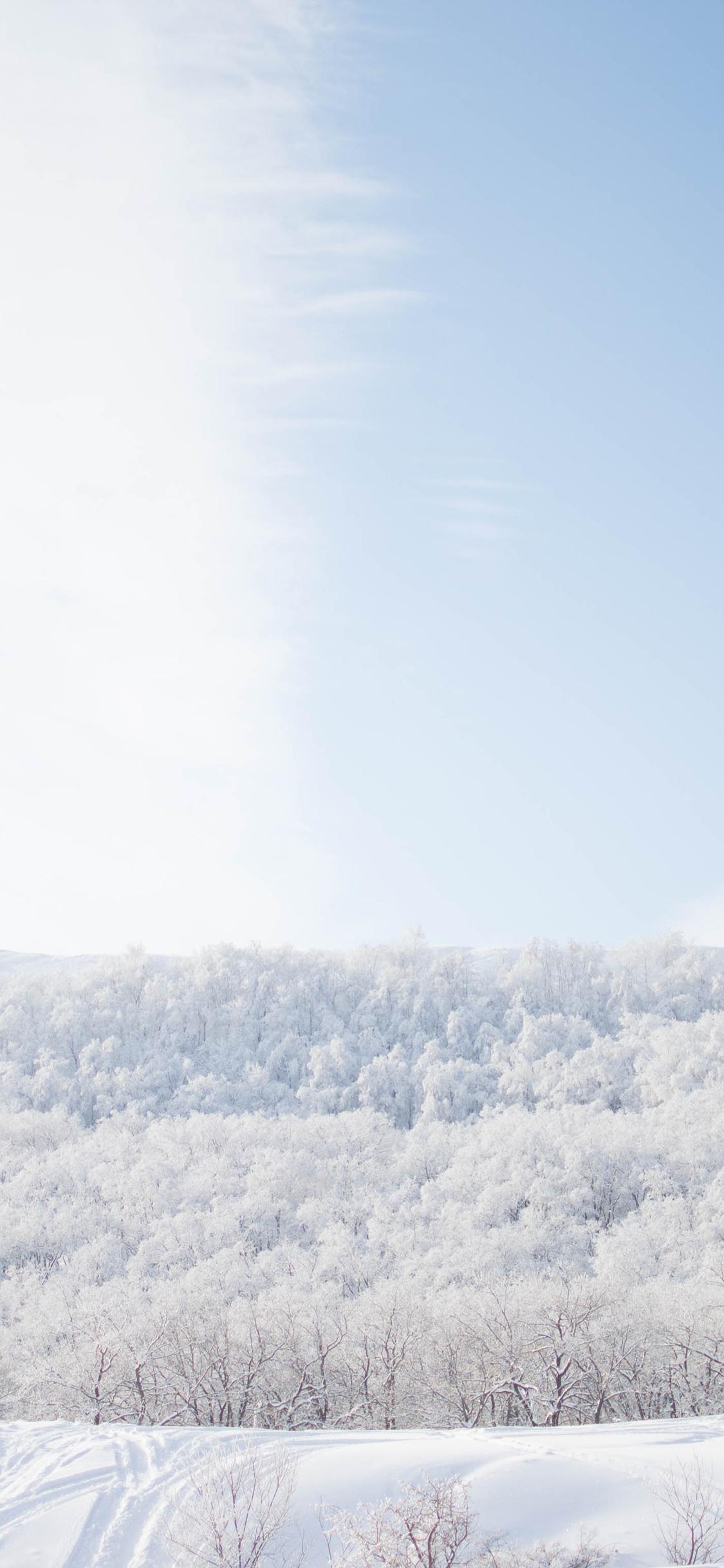 雪景 白色 唯美 冬季 动态 雪地 苹果手机高清壁纸 11