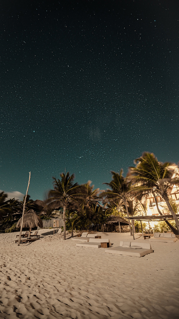 夜晚 星空 海滩 椰树 苹果手机高清壁纸 750x1334