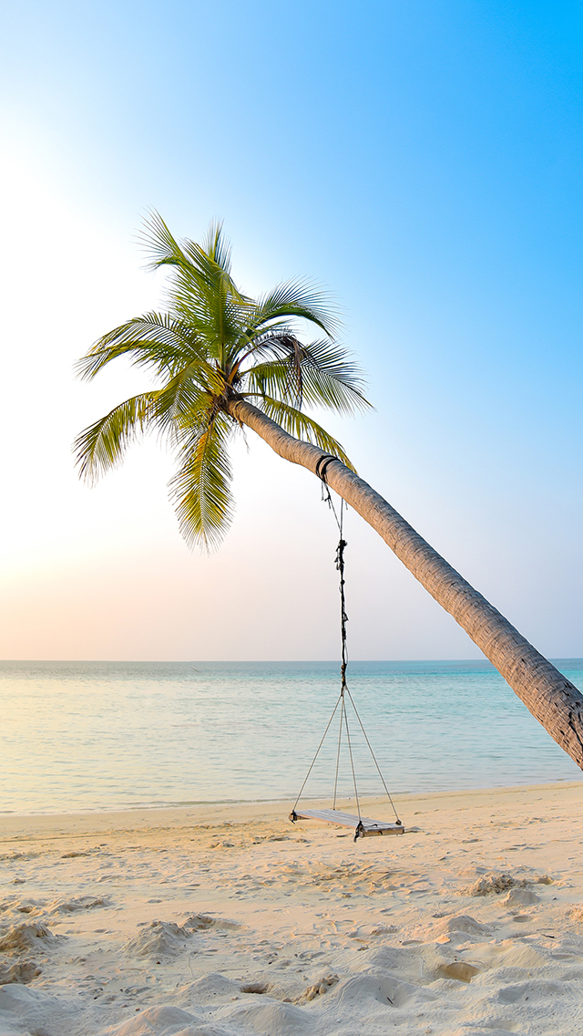 大海 海滩 椰树 秋千 苹果手机高清壁纸 640x1136