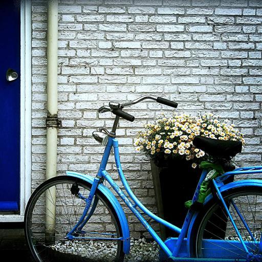 单车 酷车 小清新 灰色