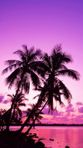 海滩上的景色 (1)10196120 大海沙滩 风景壁纸