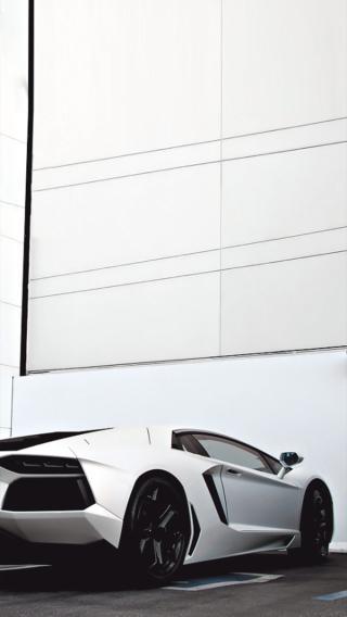 兰博基尼 白色 跑车 名车