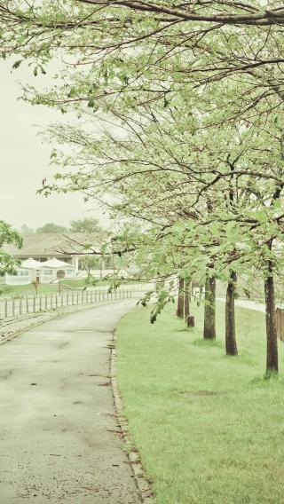 青色 日本 小镇 随拍