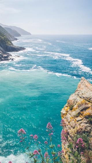 海岸线 海洋风景