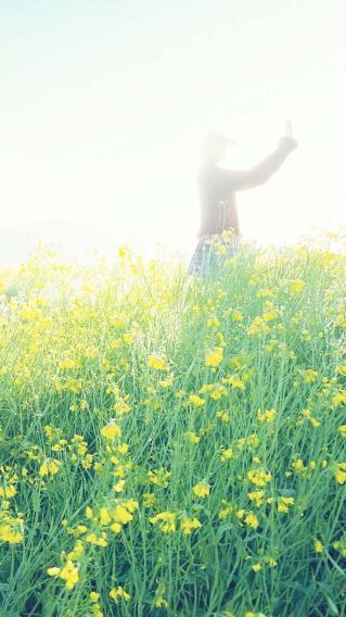 花丛 美女 绿意 户外