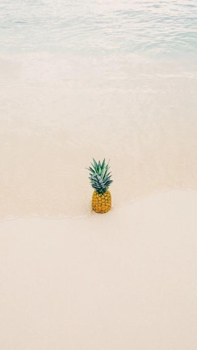 海边 海水 沙滩 菠萝 水果 小清新