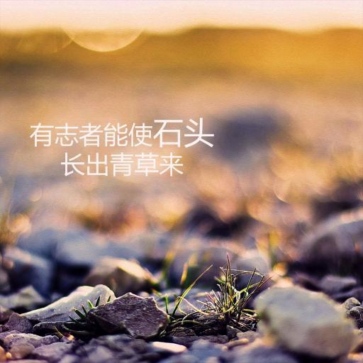 有志者能使石头长出青草来