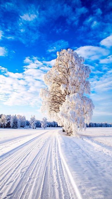 大自然美丽雪景 蓝天白云