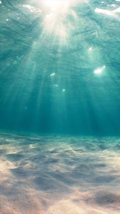 海底 大海 风景 彩色