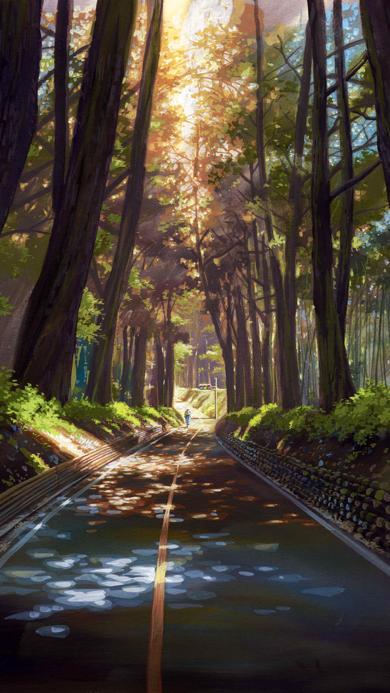 树木 树林 阳光 插画 道路