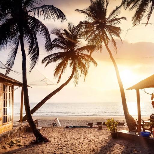 沙滩 椰子树 大海