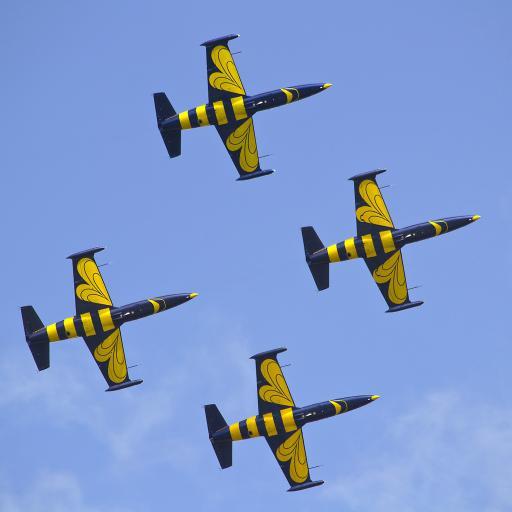 波罗的海蜜蜂 飞行特技 飞机 航空 飞行 天空
