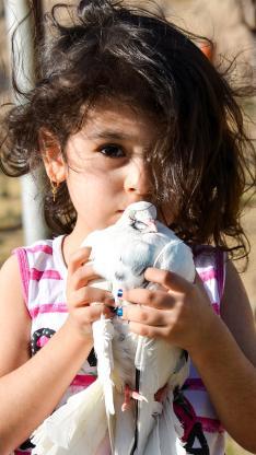 外国小萌娃 女孩 抱着鸽子