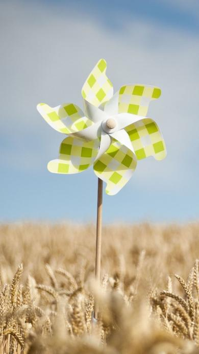 蓝天白云 麦田 绿色格子风车