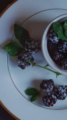 新鲜水果 树莓 绿叶
