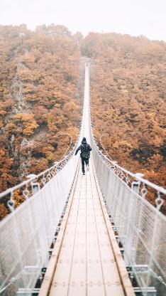吊桥 背影 奔跑 大自然 秋季