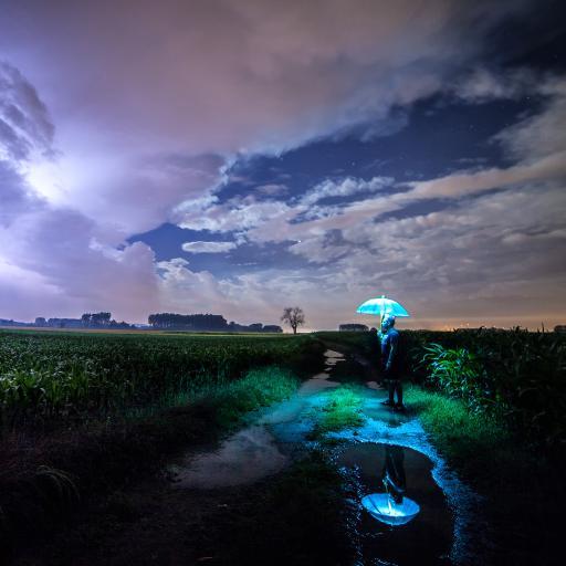 夜 玉米地 男 伞 发光 荧光