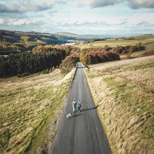 道路 游玩 风景 俯拍