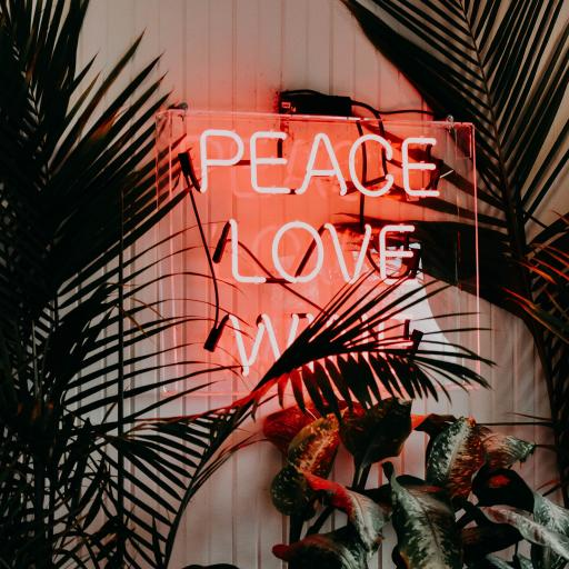 室内 绿植 字母 peace love