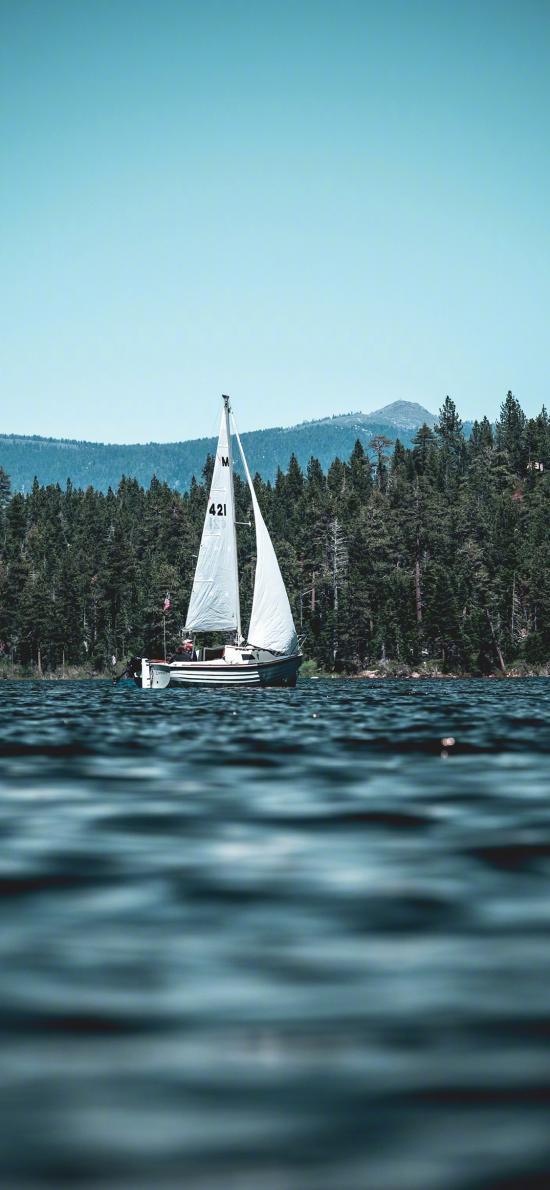 帆船 大海 蓝色 树林 航海