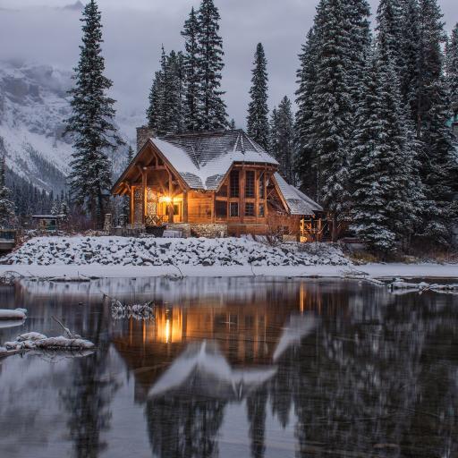 湖水 房屋 雪地 雪松