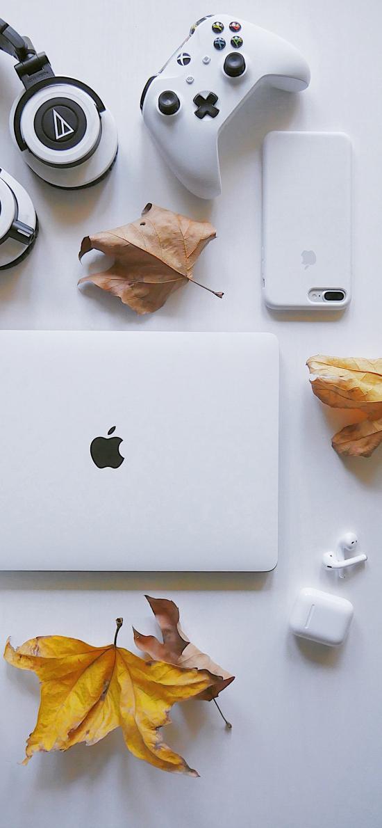 手柄 耳机 笔记本 枫叶 枯黄