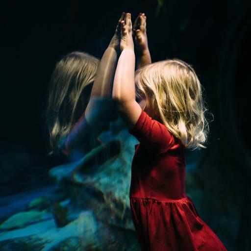 小女孩 红裙子 金发 欧美 玻璃 影子