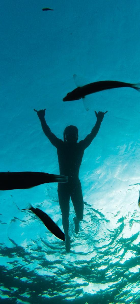 潜水 游泳 鱼类 海底