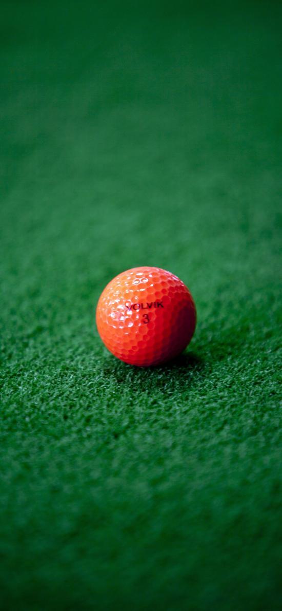 高尔夫球 草地 休闲 运动