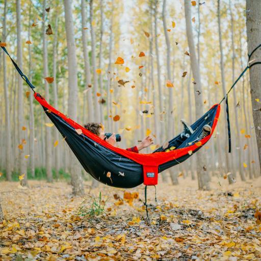 唯美秋景 林间 落叶 吊床