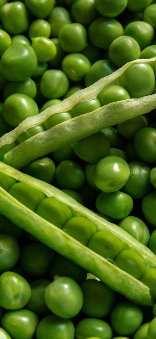 青豆 绿色 营养 食物