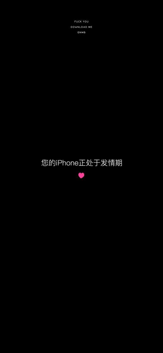 您的iPhone正处于发情期 黑白 爱心