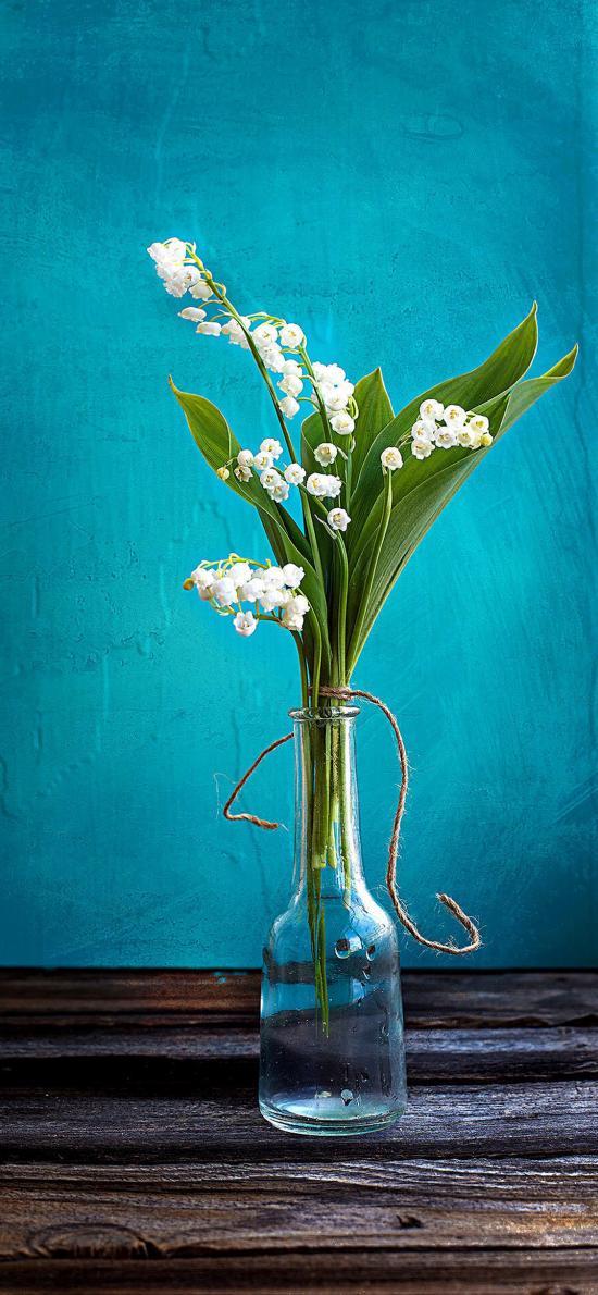 玻璃瓶 鲜花 小花 绿叶