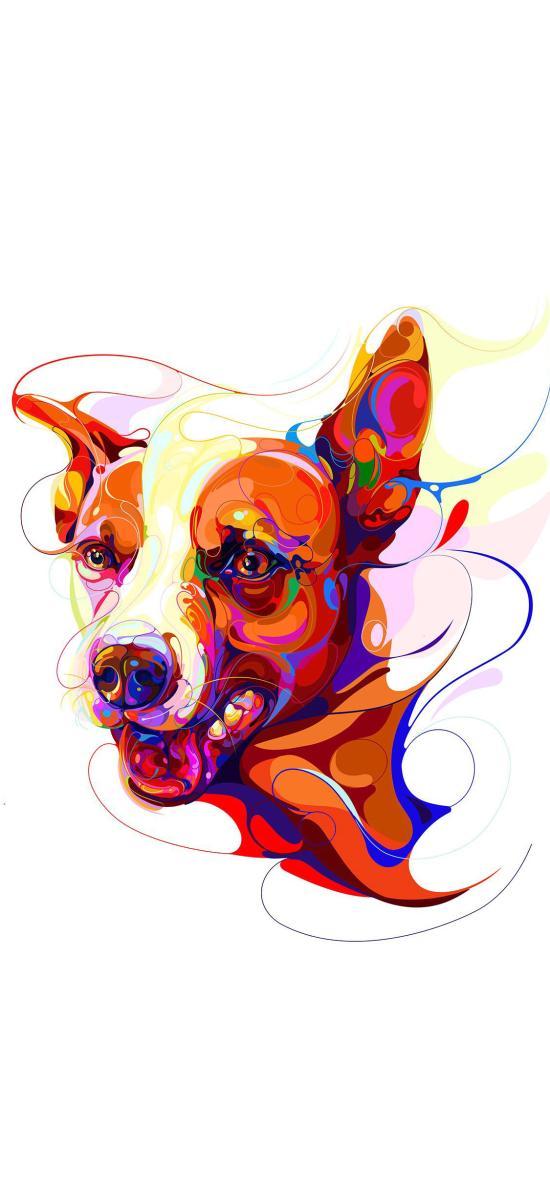 狗 色彩 汪星人 犬