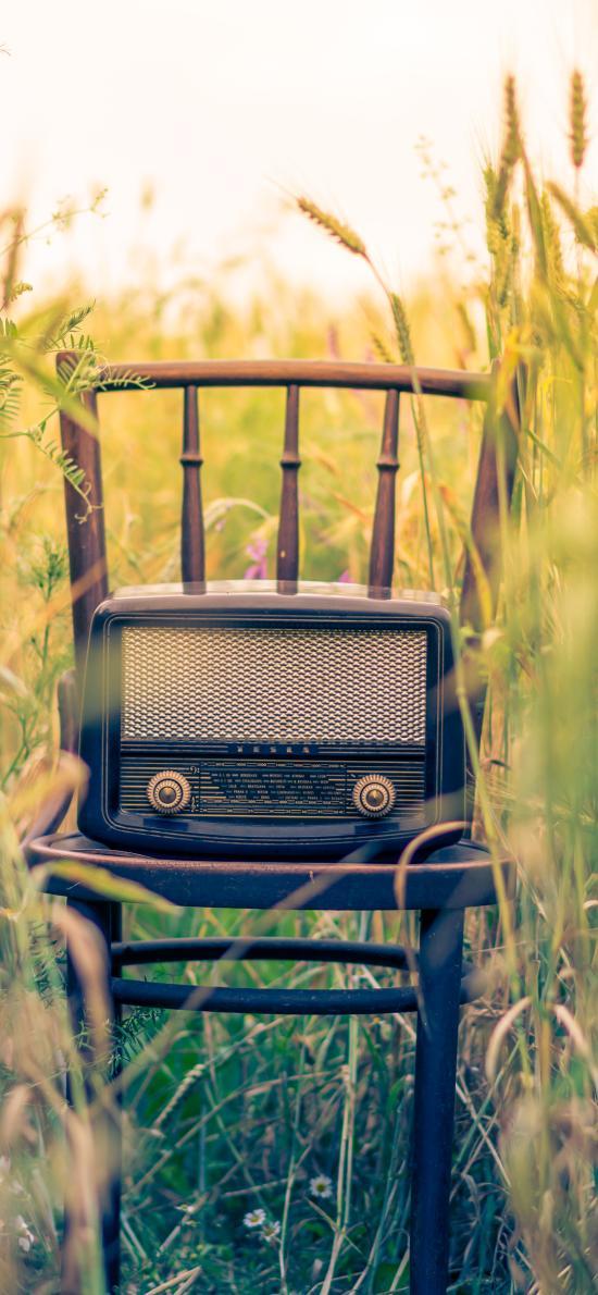 收音机 怀旧 户外 草堆