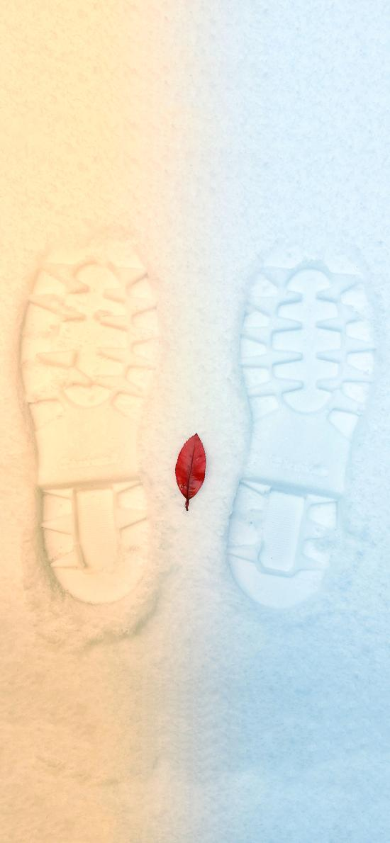 脚印 滤镜 冷暖色 树叶