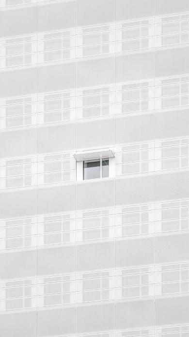 窗 建筑 白色 排列