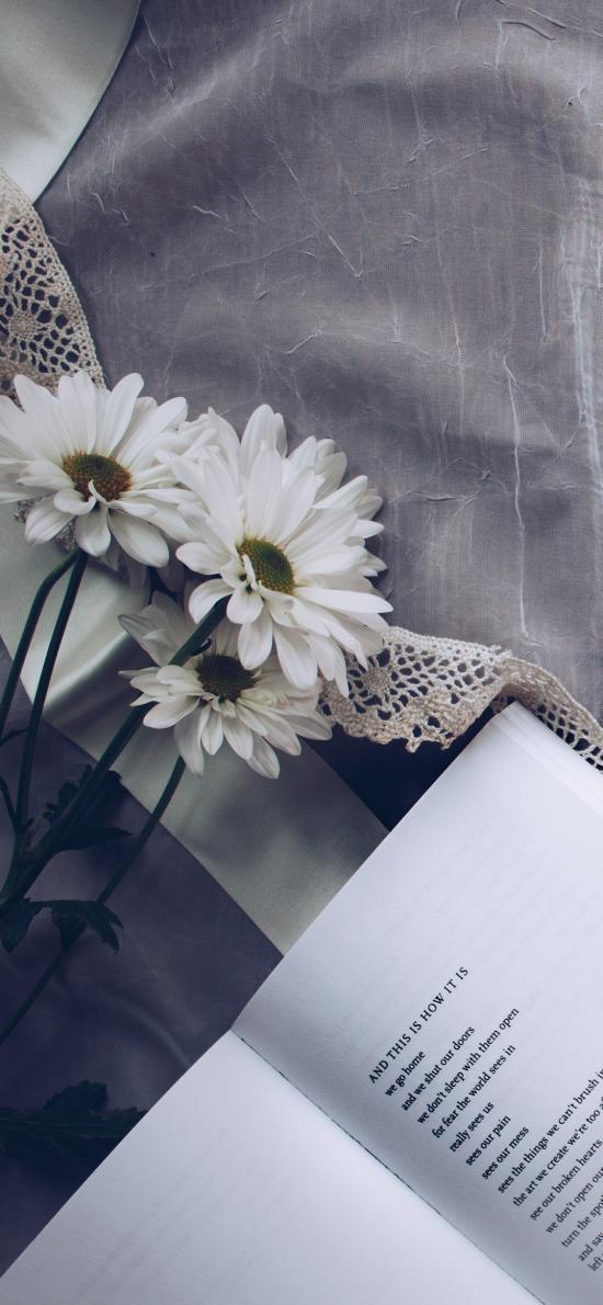 书籍 咖啡 鲜花 阅读 浏览