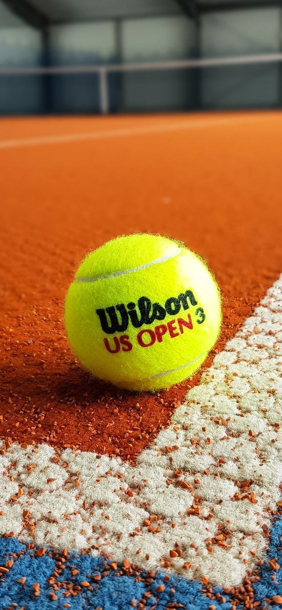 网球 运动 球场