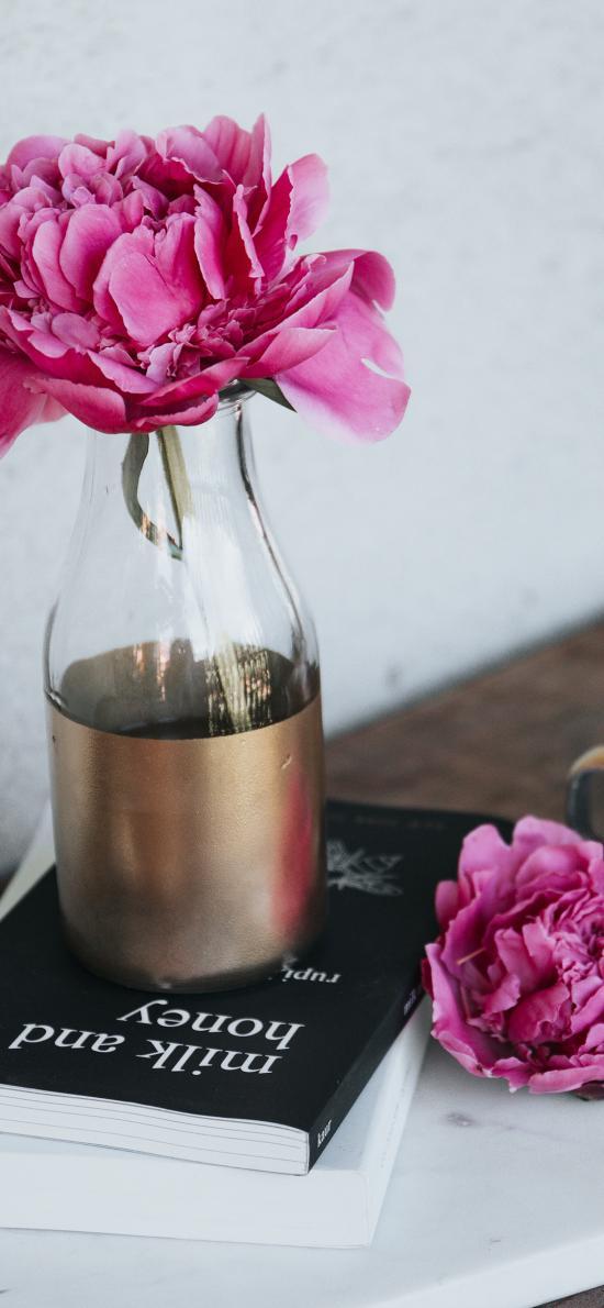 鲜花 静物 书本 玻璃瓶