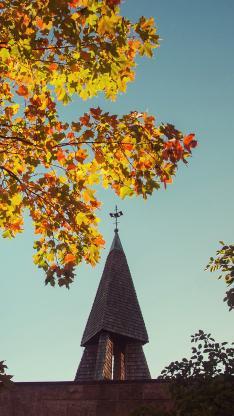 建筑 屋顶 树木 唯美
