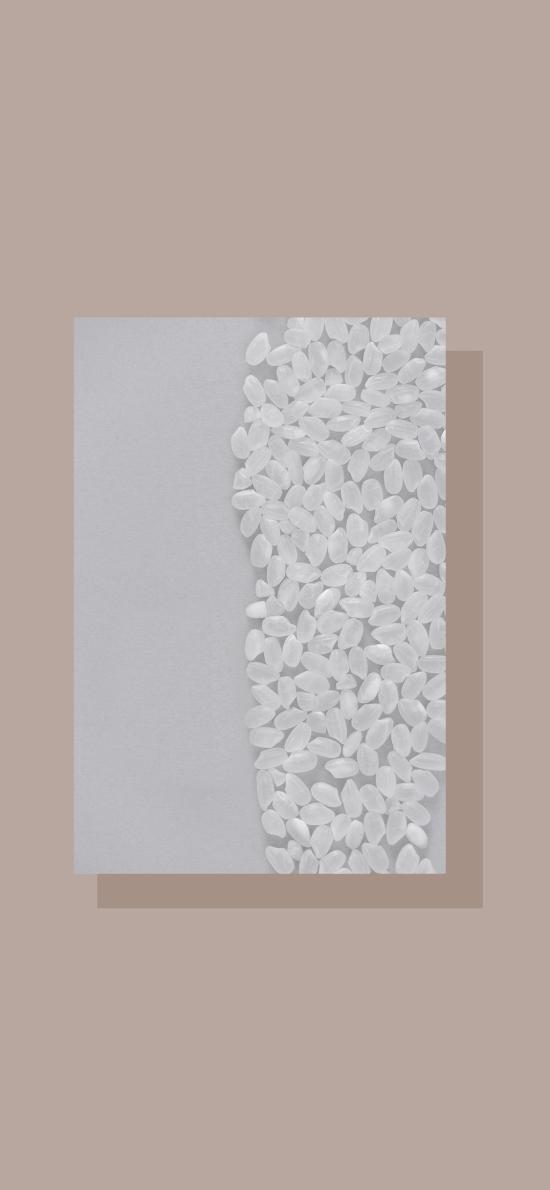 食材 粮食 珍珠米 密集