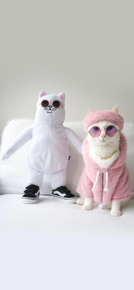 猫咪 时尚 萌 宠物 喵星人 品牌
