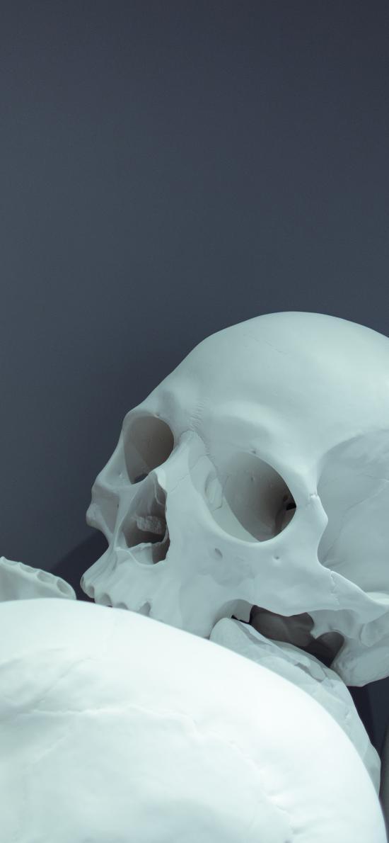 艺术 乳白色 骨质 逼真