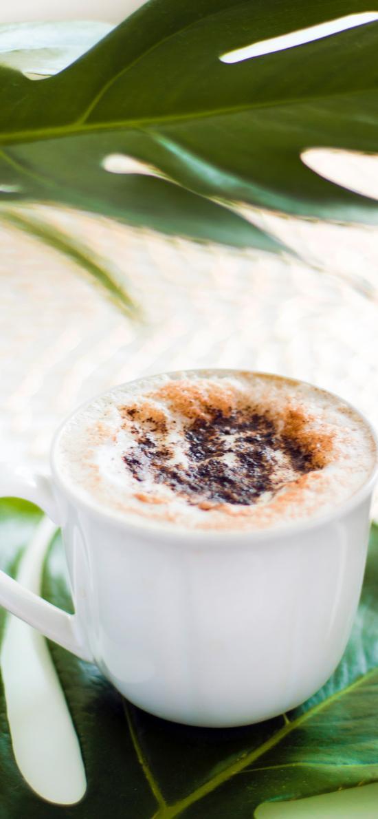 咖啡 龟背竹 绿叶 甜品