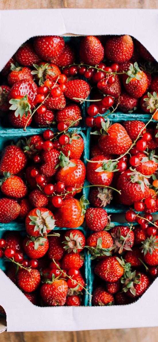 水果 浆果 草莓 新鲜