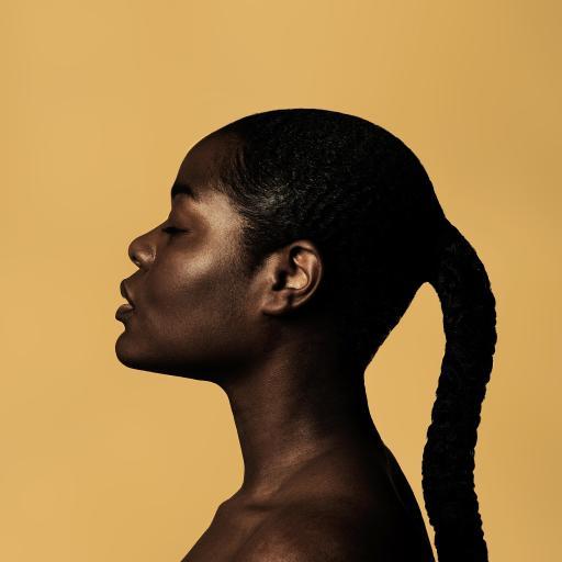 特色 非洲人种 黑皮肤 马尾 艺术